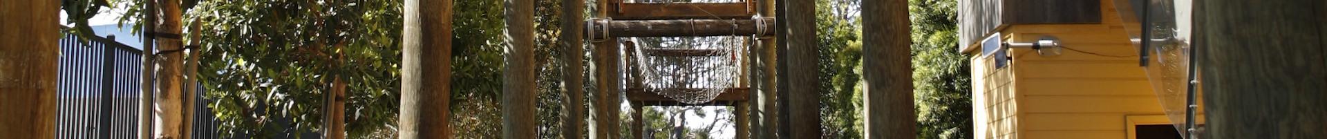 Ropes Course Adventureplex